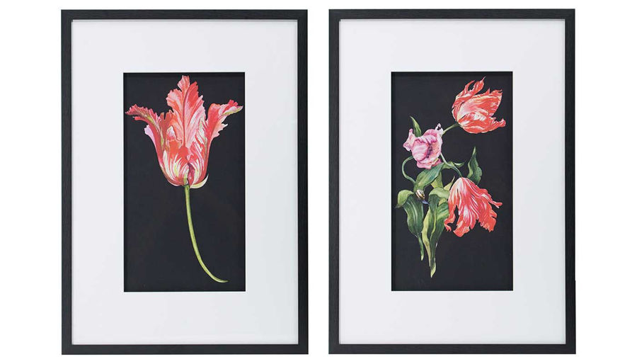 Picture of HZ Pink Flower Wall Art Set Of 2 - AV48394