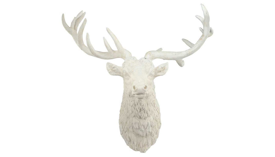 Picture of HZ White Darby Deer Head Wall Accent - HP75767