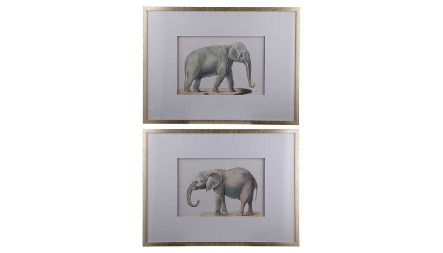 Picture of HZ Elephant Pencil Drawing - Choose 1 of 2 - AV43781